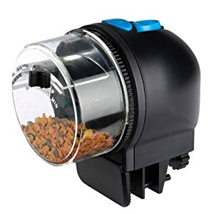 5 Best Automatic Fish Feeders